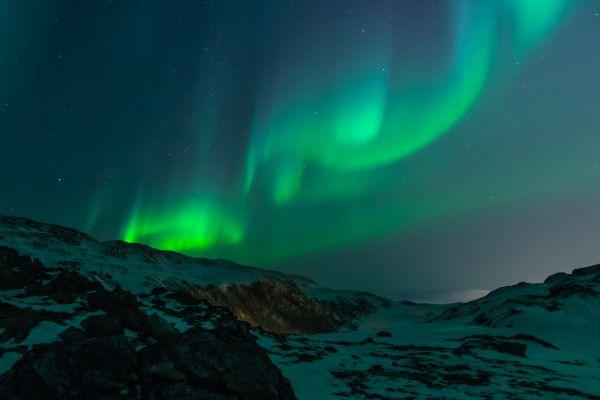 Image of Lights.